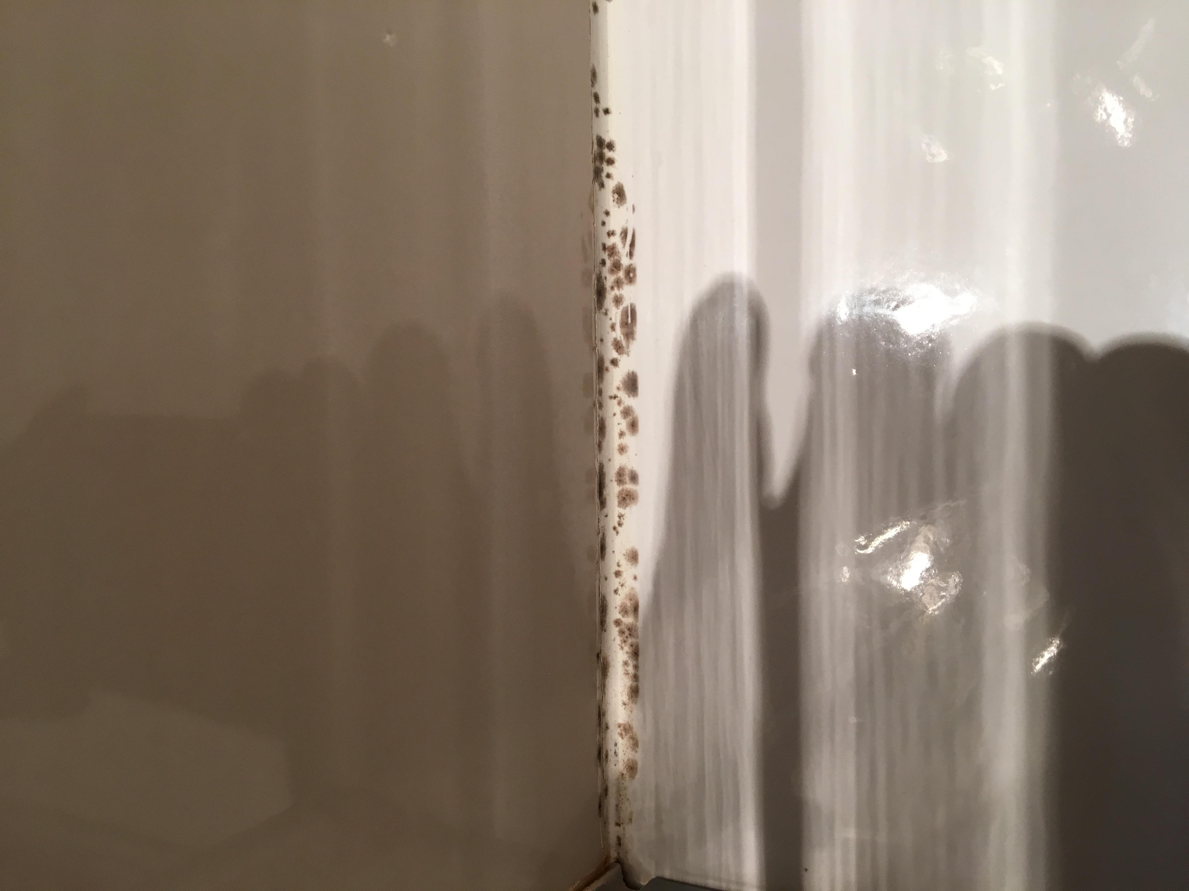 anti moisissures pour joints et salle de bains starwax produits