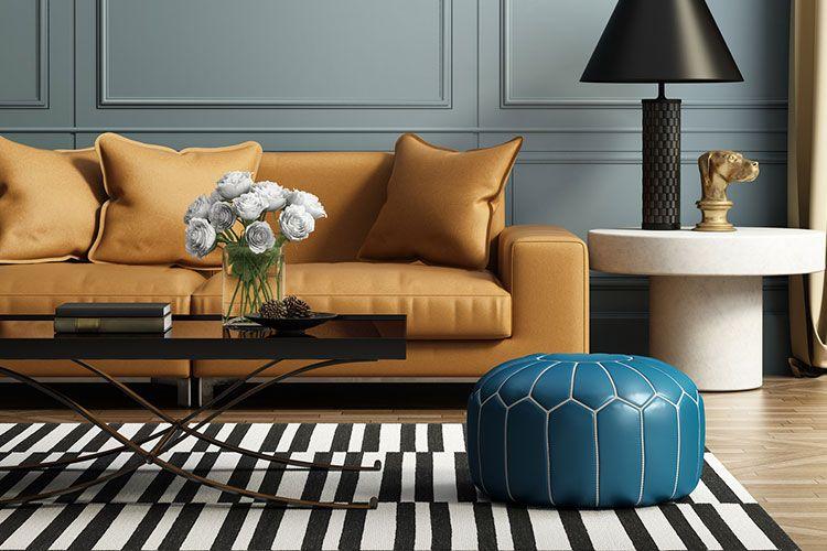 Salon avec meubles